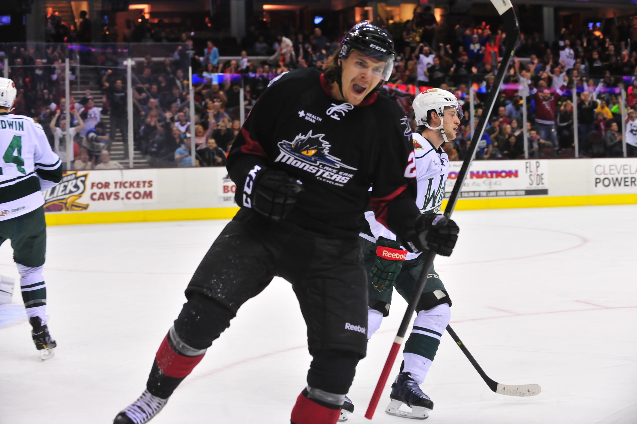 photo courtesy of the Lake Erie Monsters