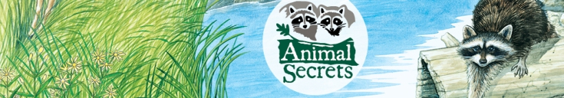 Animal Secrets Exhibit at the Cleveland Museum of Natural History May 17-Sept 14